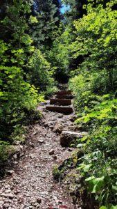 Le sentier grimpant avec des escaliers sur le parcours des gorges de la Poëta-Raisse