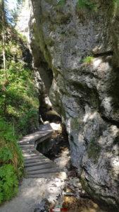 Le chemin serpentant au fond des gorges de la Poëta-Raisse
