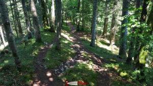 Le chemin des crêtes sur le parcours des gorges de la Poëta-Raisse.