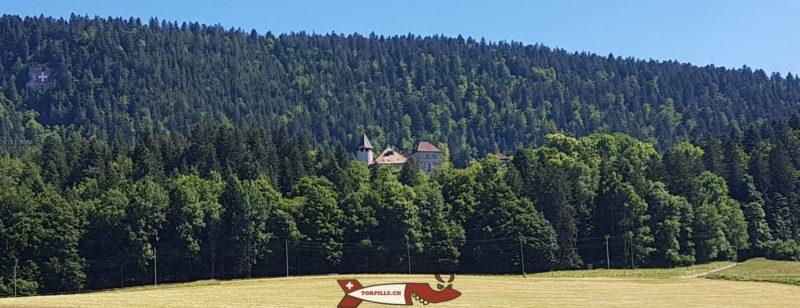 Le château depuis le village de Môtiers