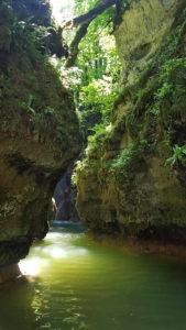 Le Veyron qui a l'endroit de la tine de Conflens à creusé de profondes gorges comme un petit canyon.