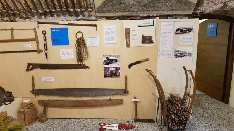 la forêt au musée des traditions et des barques du léman