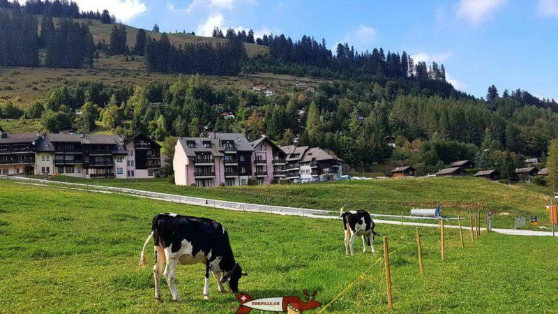 Moléson-Village.