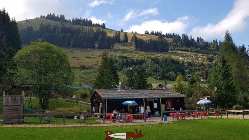 la buvette et la petite place de jeu - parc de loisirs de Moléson