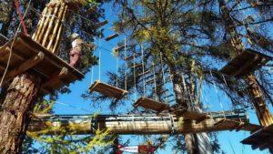 un atelier de l'accrobranche de forêt aventures