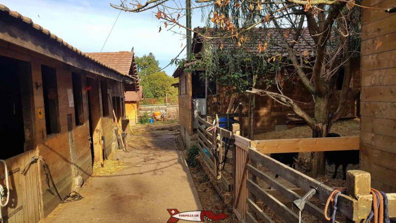boxes des chevaux à la ferme de la Gavotte