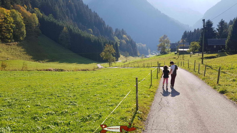 La route dans le vallon des Rives après la galerie Défago
