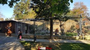 Perruches et perroquets dans les volières à la ferme de la fondation CSC à Saint-Barthélémy