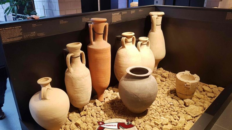 Different types of amphoras that were used to transport liquids at Lausanne-Vidy Roman Museum