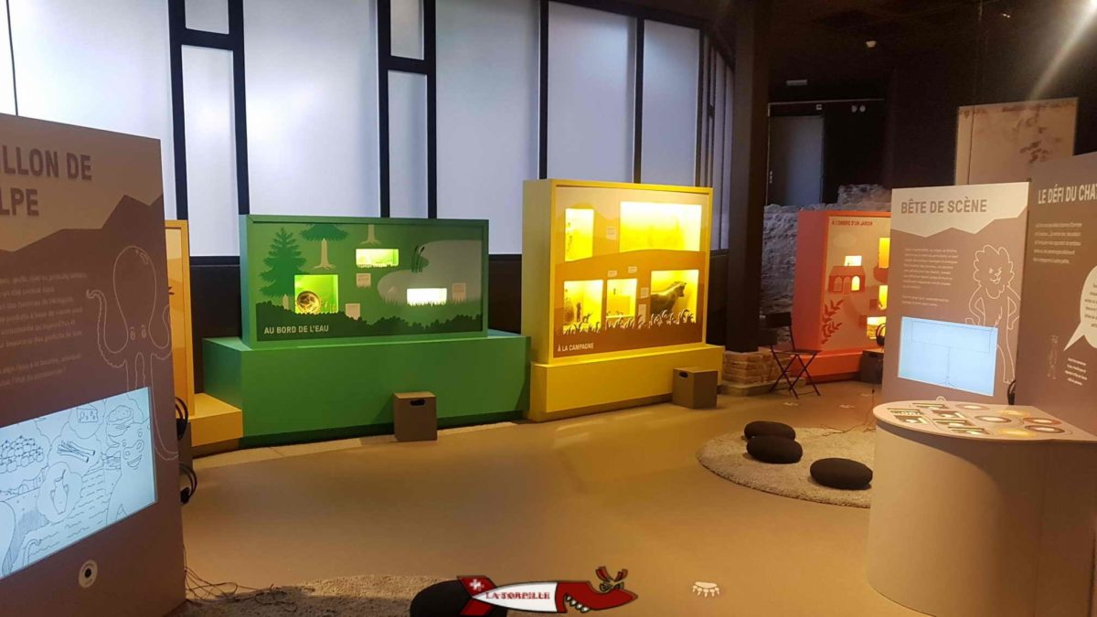 L'intérieur de l'Archéolab.