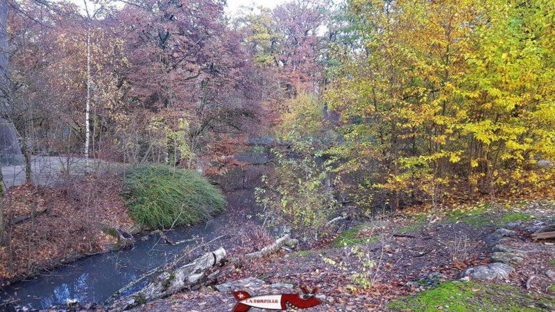 La forêt du parc aux animaux du bois-de-la-bâtie