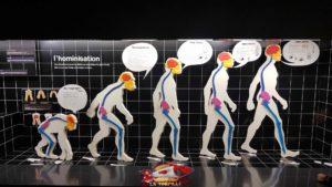 the history of man at the Geneva Museum of Natural History
