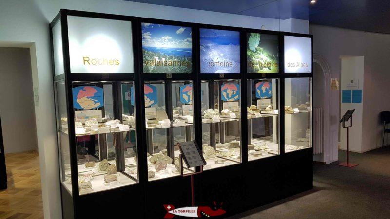 Les minéraux exposés dans des vitrines au musée des sciences de la terre à martigny
