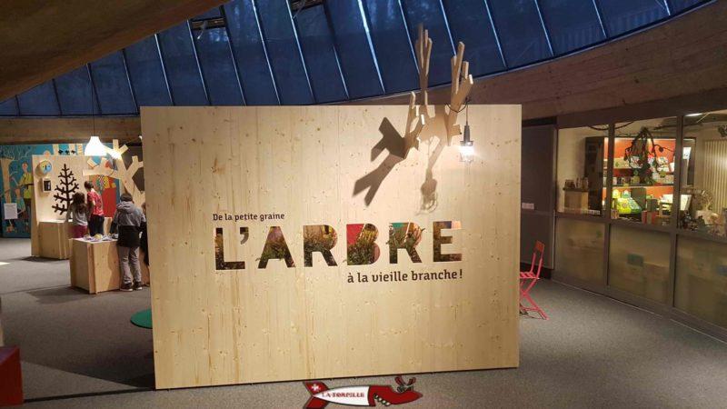 """Le départ de l'exposition lors de l'exposition """"L'arbre"""". espace inventions lausanne"""