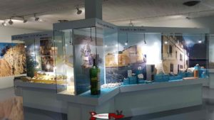 showcases on geology at the natural history museum in fribourg