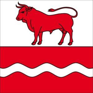 drapeau ville de bulle