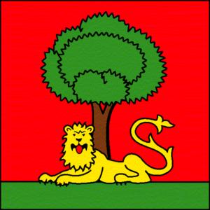 drapeau ville de carouge