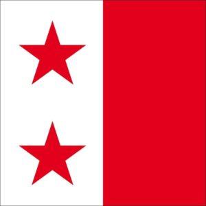 drapeau ville de sion