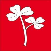 logo commune saxon