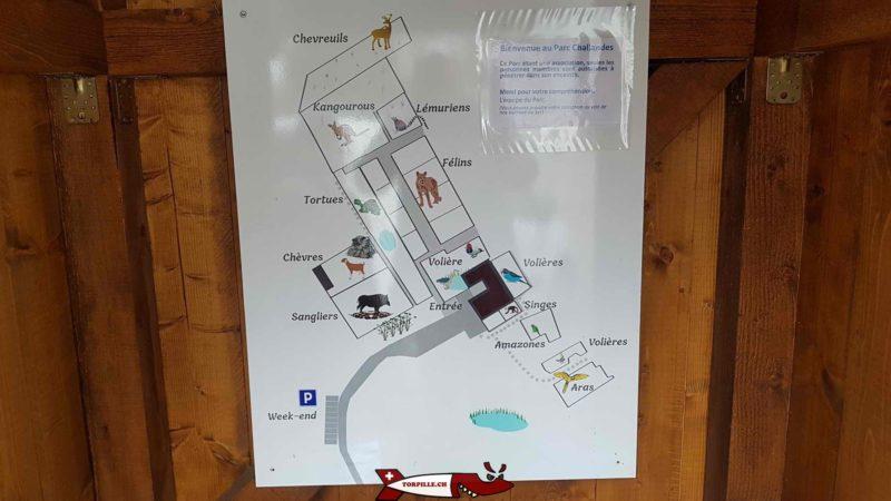 Une carte avec l'emplacement des différents animaux au parc challandes