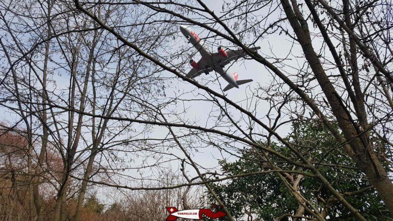 Un avion en phase d'atterrissage au dessus du parc challandes