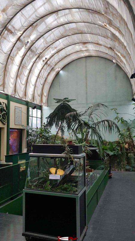 Terrariums from the ground floor to the meyrin vivarium