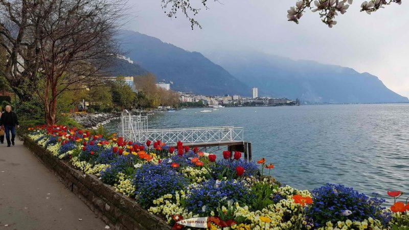 Les quais fleuris de Montreux avec au fond la tour de Montreux.