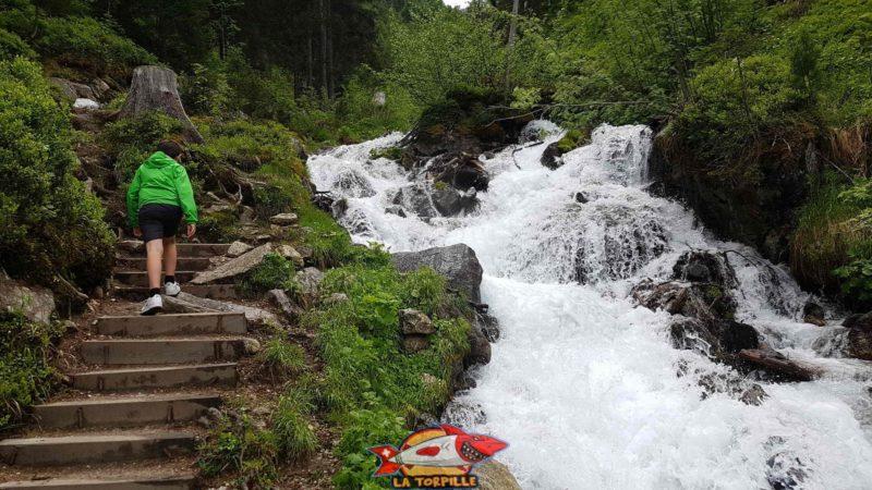 Les eaux bouillonnantes du Durnand d'Arpette quelques kilomètres en amont des gorges.