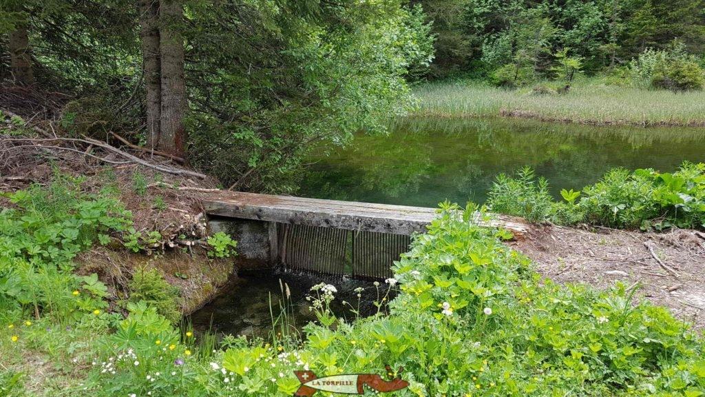 Le petit barrage qui retient les eaux de l'étang.