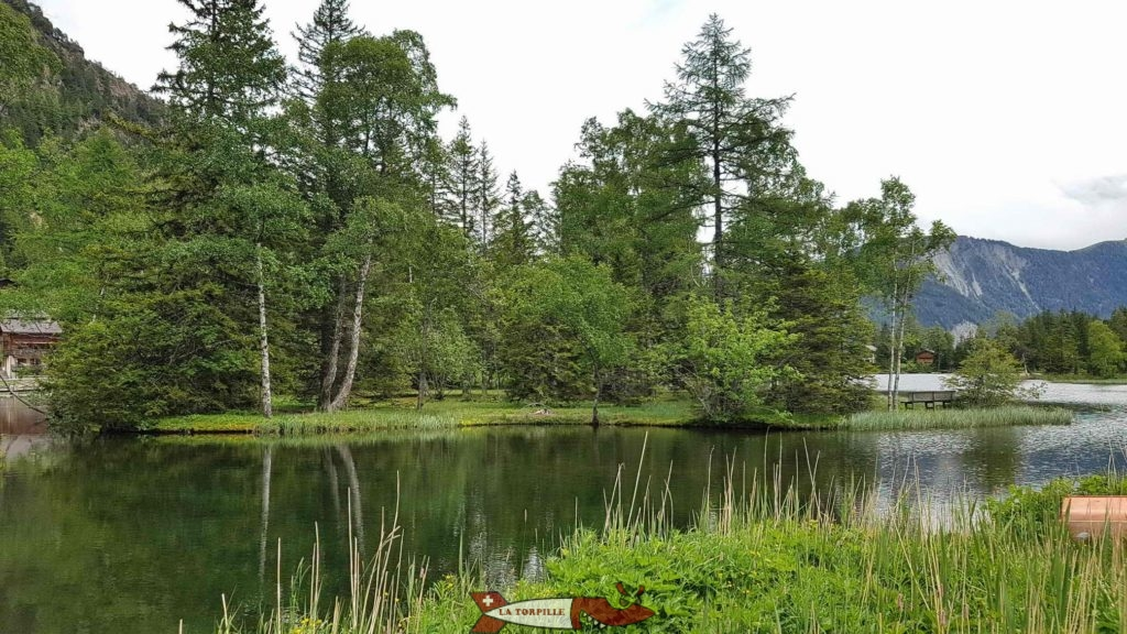 L'île du lac de Champex.