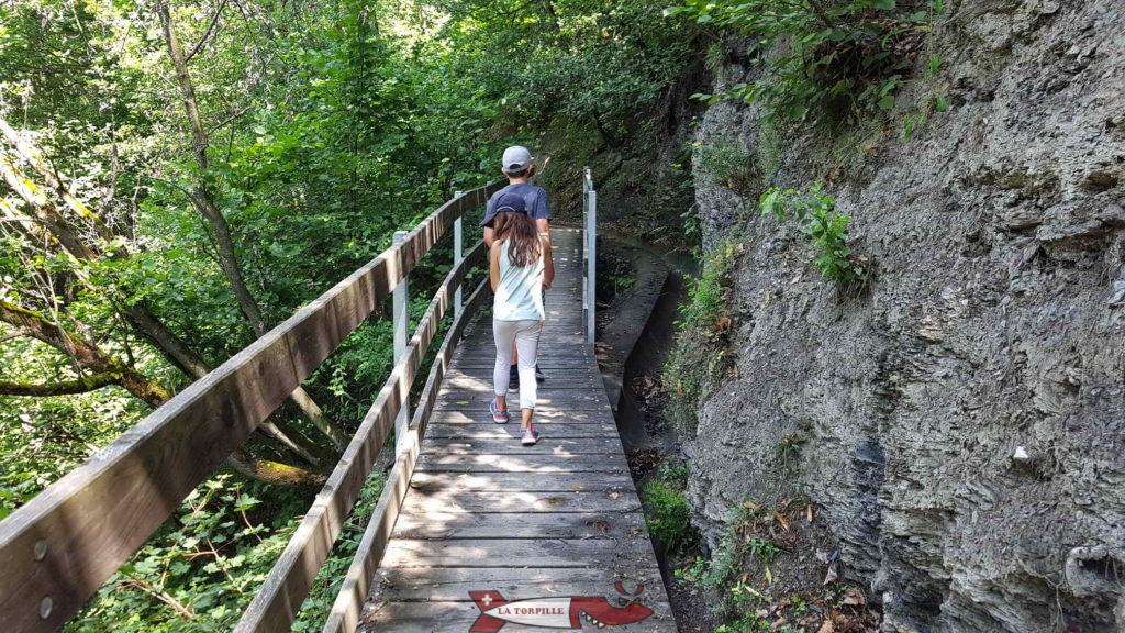Un pont en bois le long du bisse.