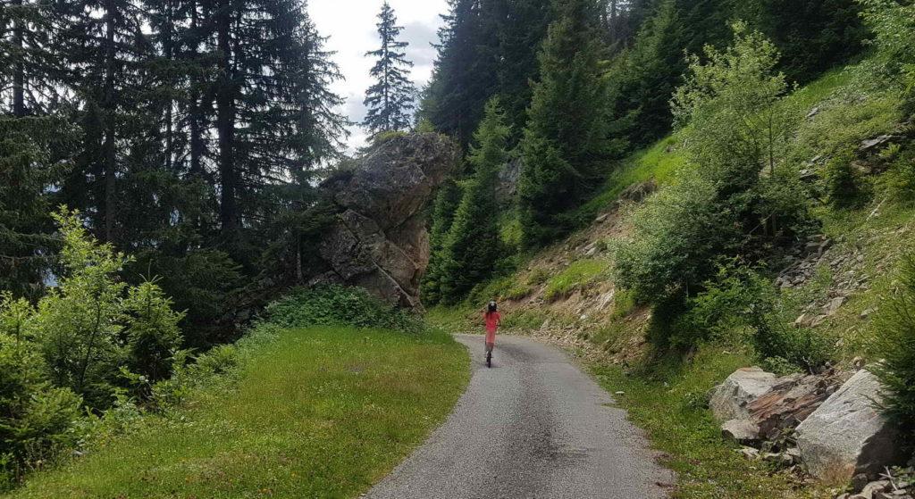 Un passage dans la forêt.