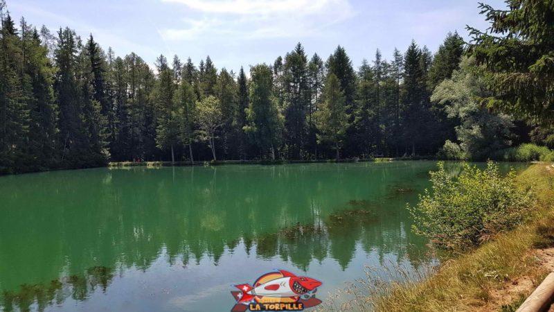 L'étang des Miriouges dans lequel se jette le bisse.