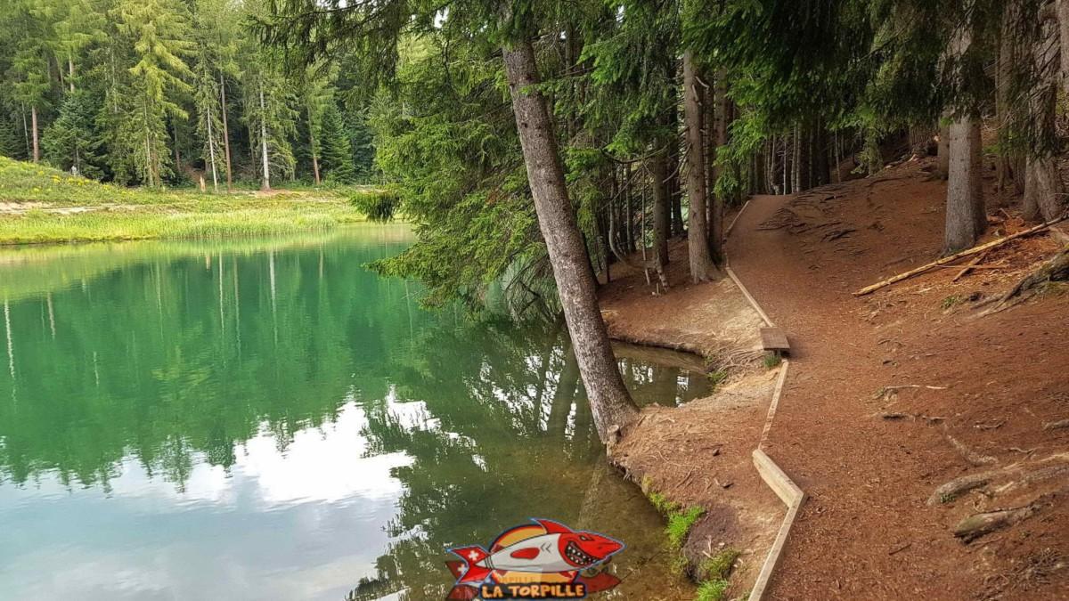 Le joli étang des Miriouges dans lequel s'écoule le bisse.