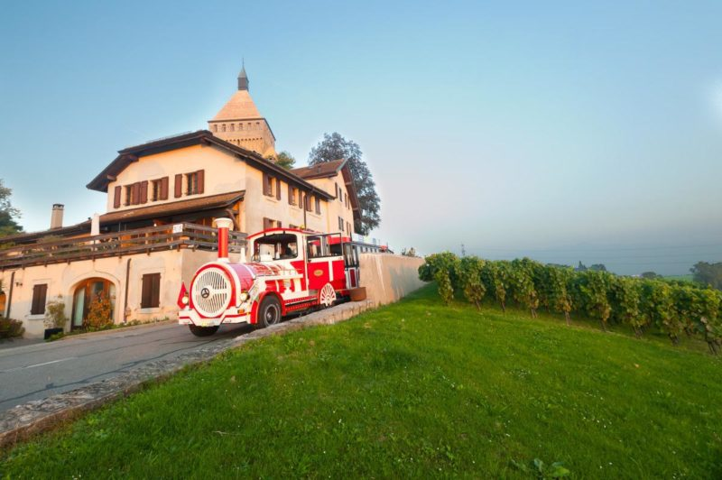 The small train of Morges with the castle of Vufflens