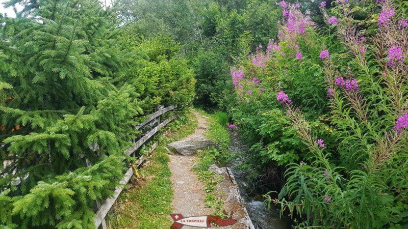 Le chemin serpente à côté des petits chalets de Nendaz.