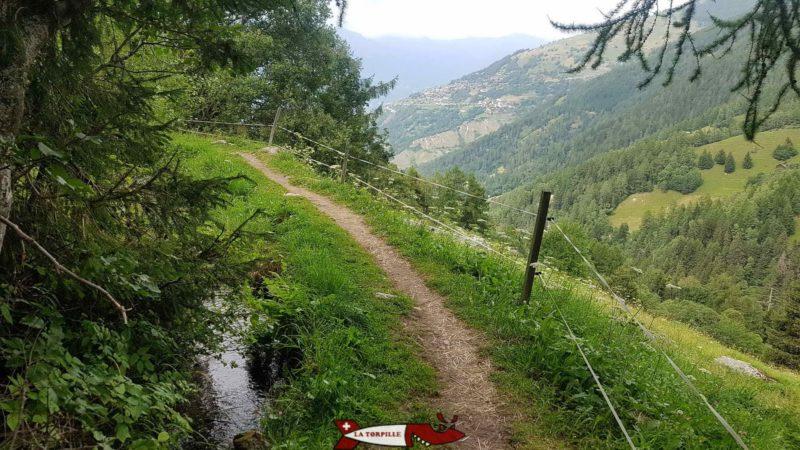 Le chemin le long du val de Nendaz.