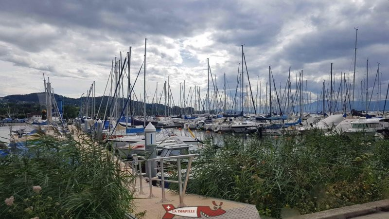 Le port d'Estavayer-le-Lac.