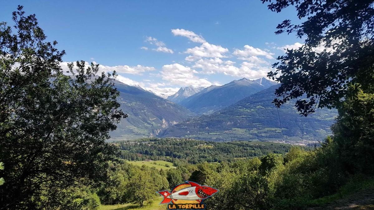 Point de vue sur le val d'Hérens et la Dent Blanche.