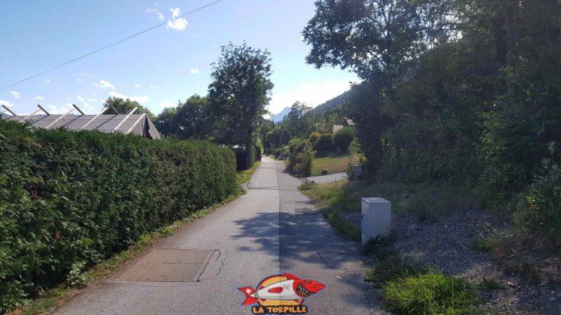 La route goudronnée dans une zone de maisons sur les hauts de Savièse qui permet de rejoindre le point de départ.
