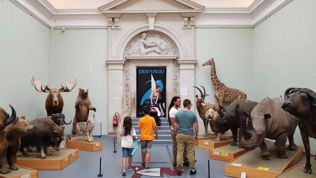 De grands animaux devant l'entrée de l'exposition temporaire.