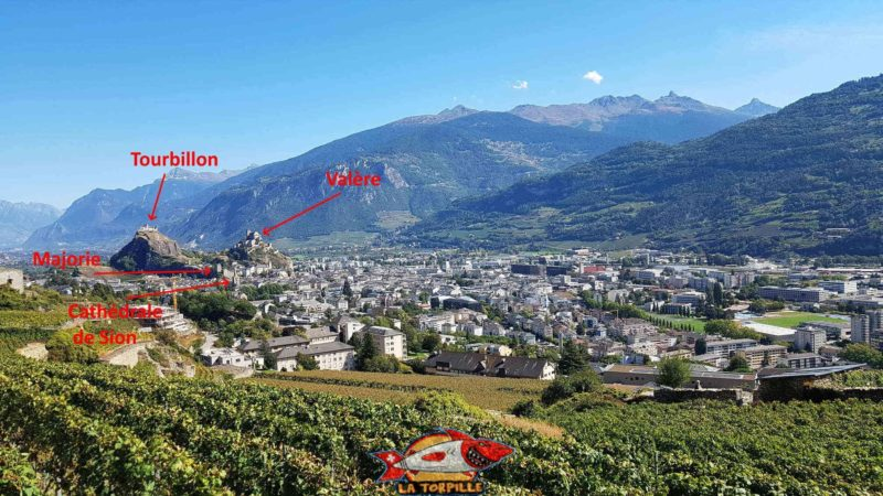 East view of the city of Sion from the Mont d'Orge bisse.
