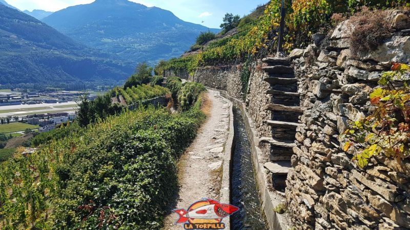 The bisse is channeled along its entire length by concrete. Large stone walls support the vine.