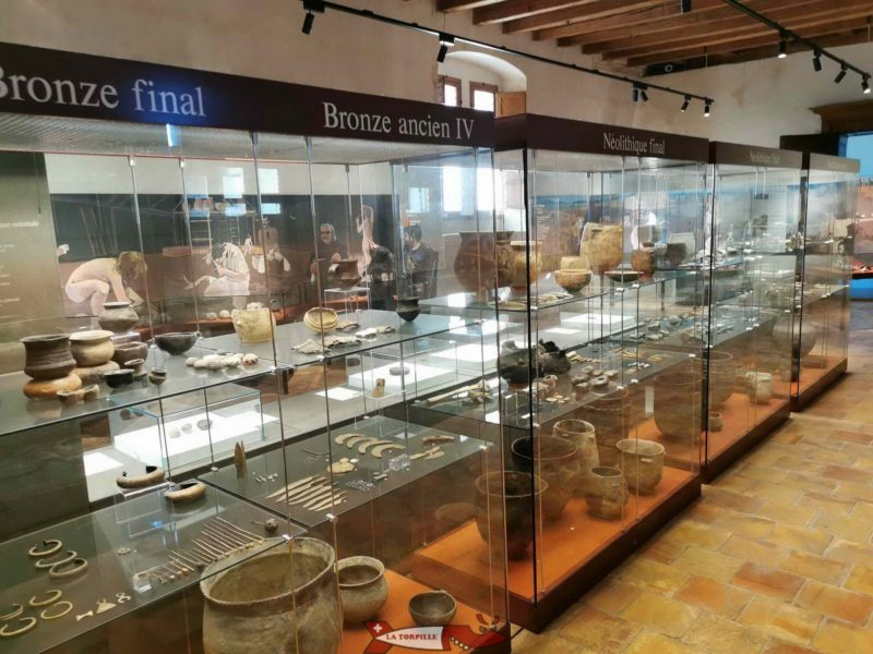 The Neolithic and the Bronze Age. Museum of Yverdon and its Region