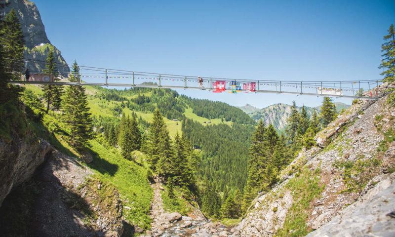 Belle-Etoile Hanging Bridge