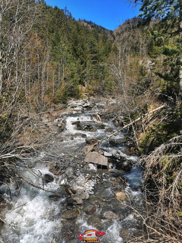 Arrivée à la prise d'eau, la rivière Sionne.