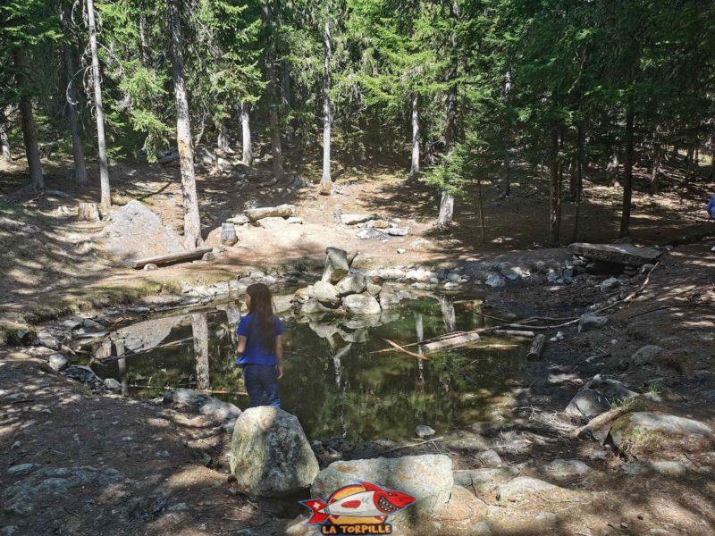 Un joli lac parcouru par le bisse autour duquel il est possible de faire des grillades. bisse de tsa creta