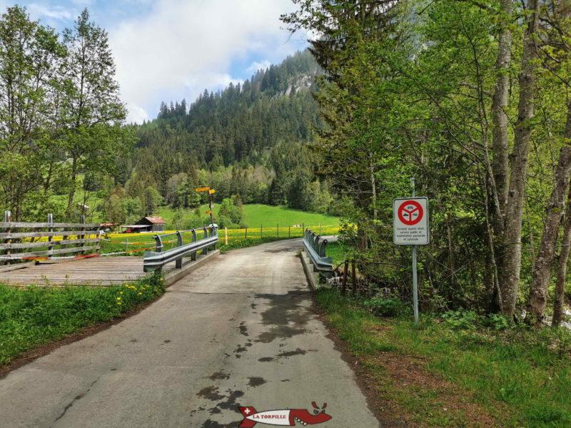 Le début du parcours sur une route goudronnée interdite à la circulation.