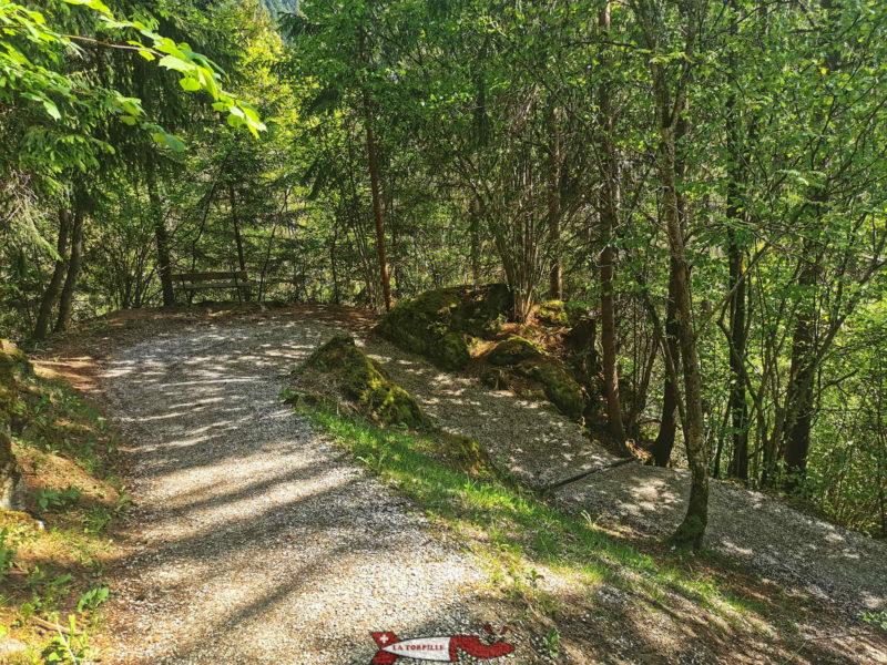 La descente vers la Sarine sur une chemin dans la forêt.