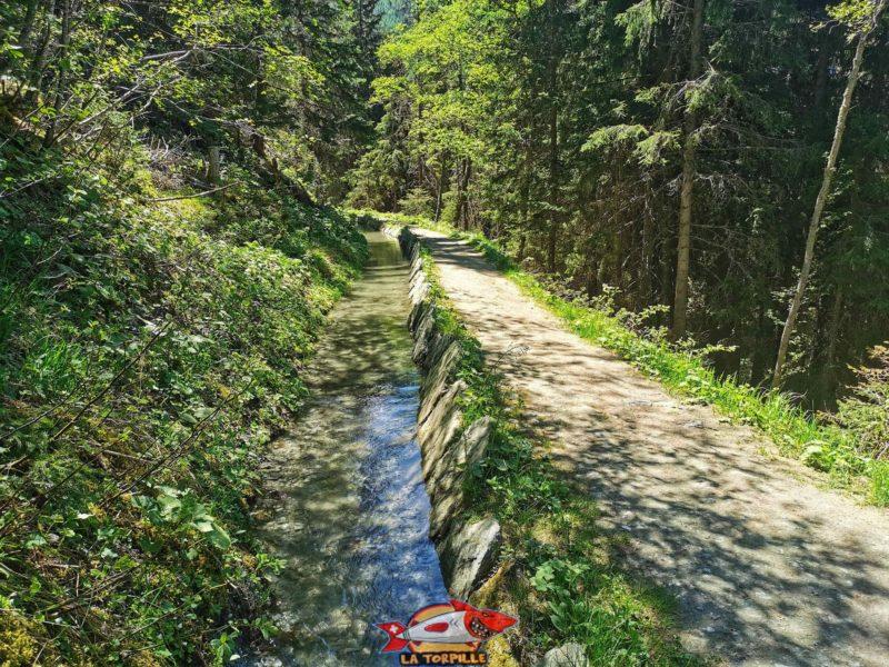 Le bisse de Vercorin dans la forêt renforcé latéralementpar des pierres.